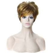 Womens High Quality Short 13cm Natural Straight Synthetic Hair Wig 2 Tones Brown Blonde Cosplay Wig