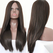 PlatinumHair #4 long straight wigs synthetic lace front wigs heat resistant synthetic hair wigs 70cm