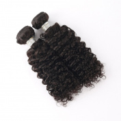 BHHAIR Brazilian Virgin Remy Human Hair Weave Human Hair Extensions Wigs Curly Wave 14