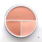 Sungpunet Concealer Palette Makeup Contour Face Cream