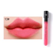Rosabeauty 24 Colours Velvet High Quality Waterproof Long Lasting Lip Gloss Sexy Lipstick