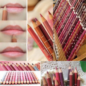 Togirl Lot Colours Professional 12PCS Lipliner Waterproof Lip Liner Pencil 15CM