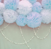 Furuix 8pcs White Mixed Baby Blue Tissue Paper Pom Pom Paper Flower Pom with 2 pcs White Paper Circle Garlands for Baby Shower Wedding Birthday Celebration Table Wall Decoration