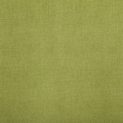 Kiwi Linnen Green Solid Print Outdoor Upholstery Fabric by the yard
