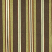 St Topez Green Brown Beige Stripe Print Outdoor Upholstery Fabric by the yard
