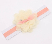 Zetti Baby Girls Headbands Lace Petal with Flower