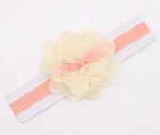 Zetti Baby Girls Headbands Lace Petal with Flower
