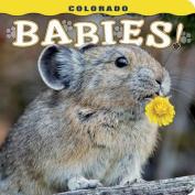 Colorado Babies!