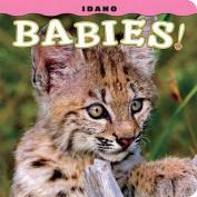 Idaho Babies!