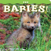 Fox Babies! [Board Book]