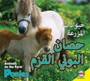 Ponies [ARA]