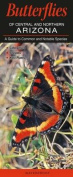 Butterflies of Central and Northern Arizona