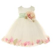 Baby Girls Ivory Peach Petal Adorned Satin Tulle Flower Girl Dress 6-24M