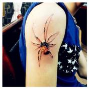 1 Sheet Temporary 3D Spider Tattoo Decals Fashion Waterproof Body Art Tattoos Sticker