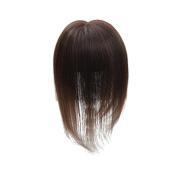 Remeehi 7.6cm x 13cm Mono 100% Human Hair Topper 25cm Long Straight Hair Top Pieces for Women Light Brown