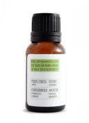 Oregano Essential Oil by Simply Earth - 15 ml, 100% Pure Therapeutic Grade