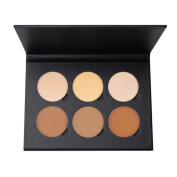 Eshion 6 Colours Pressed Powder Makeup Cosmetic Foudation Bronzer Highlighter Contouring Face Powder Palette