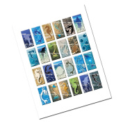 2.5cm x 5.1cm Sea Life Water Collage Sheet Rectangles with Mermaid Images for Jewellery Making Scrapbooking and More