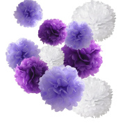 Hmxpls 18pcs Tissue Paper Pom-poms Flower Ball Wedding Party Outdoor Decoration Premium Tissue Paper Pom Pom Flowers Craft Kit