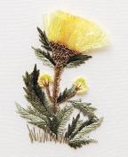 Cornflower - Edmar kit #1701, Brazilian embroidery KIT, Cream Fabric