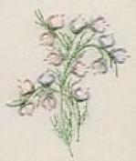 Creeping Flowers - Edmar kit #5101, Brazilian embroidery KIT, Cream Fabric