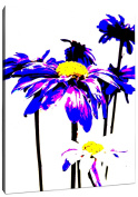 Positively Home Purple Blooms1 Purple Blooms Photographic Print on Wrapped Canvas, 28cm X 36cm ,,