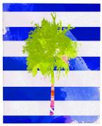 Positively Home TriniPalmCanvas_Green_2 Trinidad Palm Tree Watercolour on Wrapped Canvas, 41cm X 50cm , Green,41cm X 50cm