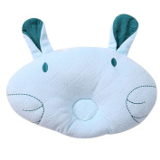 Scheppend 3D Cute Cartoon Prevent Flat Head Anti-roll Shaping Pillow,Blue