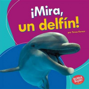 Mira, Un Delfin! (Look, a Dolphin!) (Bumba Books en Espanol Veo Animales Marinos  [Spanish]