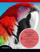 Beautiful Birds Volume 2