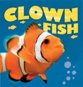 Clownfish (Wild Planet)