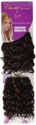 Chear Water Wave 2-in-1 Weft Human Hair Extension with Premium Blend Weave Number P1B/33, Off Black/Dark Auburn 8-Inch
