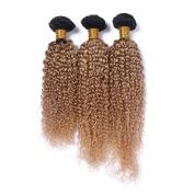 Tony Beauty Hair 8A Ombre Human Hair Extensions Bundles 3 Bundles 70cm 70cm 80cm Ombre Brazilian Curly Bundles Hair Colour #27/#1B Ombre Deep Curly Bundles