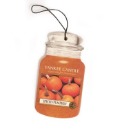 Spiced Pumpkin Yankee Candle® Car Jar®