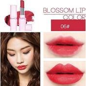 SHERUI Beauty Matte Colour Lipstick Liquid Makeup Lip Gloss Pencil Waterproof #10