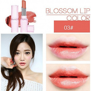 SHERUI Beauty Matte Colour Lipstick Liquid Makeup Lip Gloss Pencil Waterproof #5