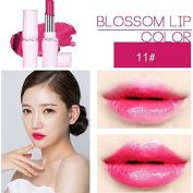 SHERUI Beauty Matte Colour Lipstick Liquid Makeup Lip Gloss Pencil Waterproof #33