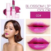 SHERUI Beauty Matte Colour Lipstick Liquid Makeup Lip Gloss Pencil Waterproof #2