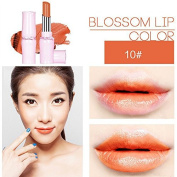 SHERUI Beauty Matte Colour Lipstick Liquid Makeup Lip Gloss Pencil Waterproof #32