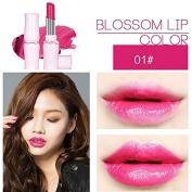 SHERUI Beauty Matte Colour Lipstick Liquid Makeup Lip Gloss Pencil Waterproof #1