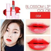 SHERUI Beauty Matte Colour Lipstick Liquid Makeup Lip Gloss Pencil Waterproof #16