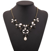 A & C Fashion Bohemia Flower Shaped Necklace for Women. Chic Resin and Rhinestone Necklace for Girl.