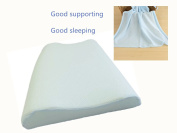 Luxury Silicone Baby Head Shaping and Protection Sleeping Pillow with pillowcase