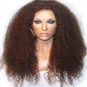 Etino Synthetic Lace Front Wig Heat Resistant Kinky Curly Black Highlights Heavy Density Wig