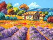 MailingArt Wooden Framed Paint By Number No Mixing / No Blending Linen Canvas DIY Painting - Colourful Field