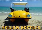Yellow Beetles 2017