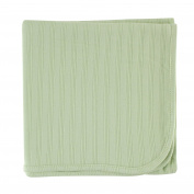 Hudson Baby Organic Cotton Receiving Blanket, Celery, 100cm x 100cm