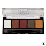 Fheaven 5 Colour Plate Makeup Eye Shadow Blush Colour Plate