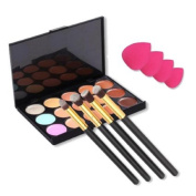 LaiFeiYa - Free Makeup Four Pink Spong With15 colours For Face Cream Makeup Concealer Palette With 4pcs Powder Brushes e