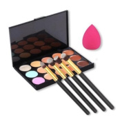 LaiFeiYa - 15 colours For Face Cream Makeup Concealer Palette with Free Makeup Spong With 4pcs Powder Brushes e